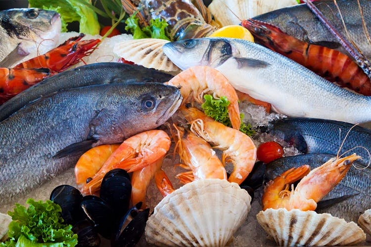 Fish,Fish products,Seafood,Fish,Organism,Food,Cuisine,Recipe,Marine biology,Dish