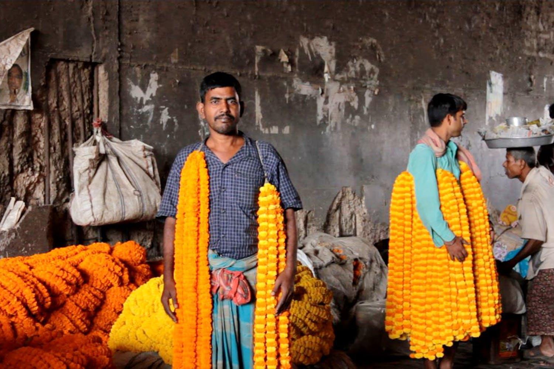 image - Mullick Ghat Flower Market