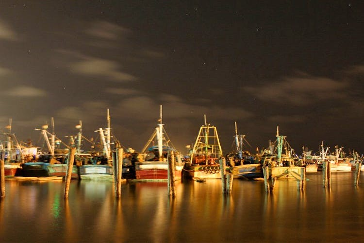 image - The Royapuram Fishing Harbour