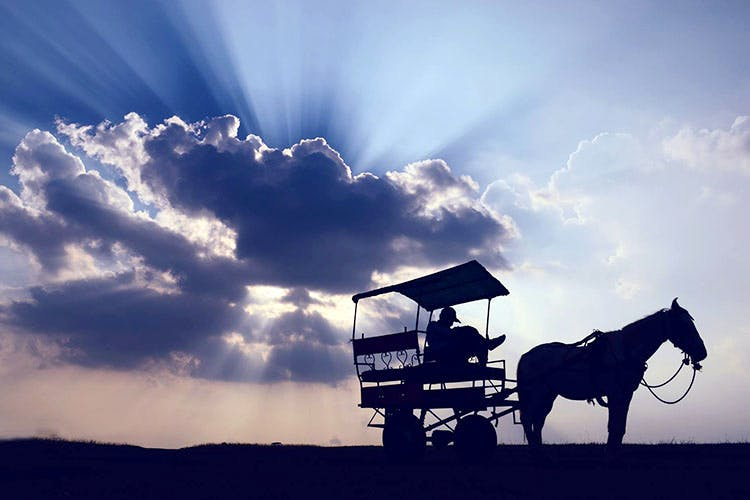 Sky,Horse,Cloud,Horse and buggy,Mode of transport,Carriage,Cart,Horse tack,Vehicle,Stock photography