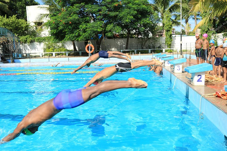 Dolphin Swimming Academy | LBB
