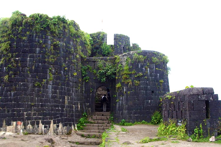 Ruins,Wall,Historic site,Fortification,Building,Ancient history,Archaeological site,Grass,History,Tree