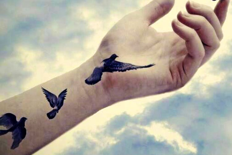 Sky,Hand,Wing,Arm,Pigeons and doves,Bird,Atmosphere,Seabird,Finger,Cloud
