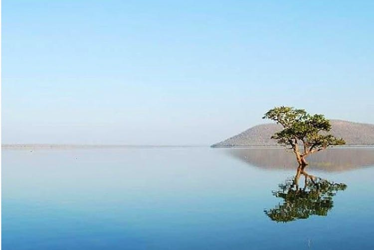 Water resources,Nature,Water,Natural landscape,Sky,Blue,Calm,Reflection,Islet,Tree