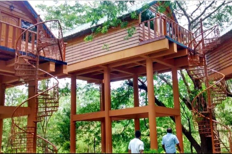 Roof,Deck,Tree,House,Building,Cottage,Tree house,Log cabin,Wood,Porch