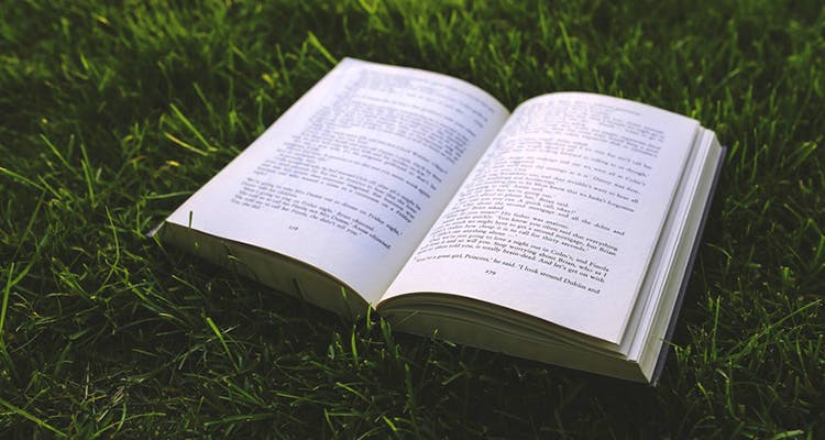 Text,Grass,Book,Font,Reading