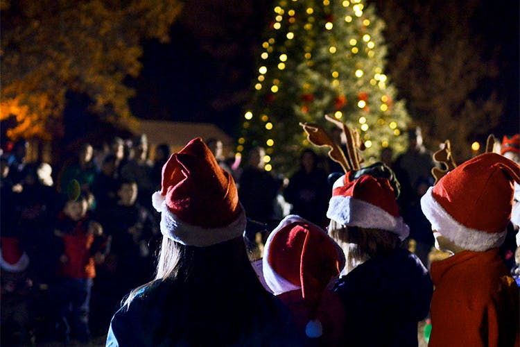 Tradition,Event,Fête,Crowd,Christmas,Christmas lights,Holiday,Festival,Ceremony