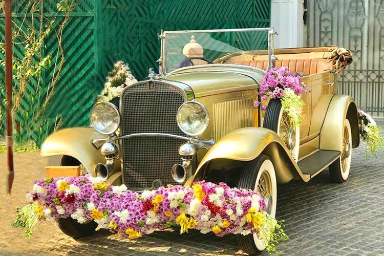 Classic,Vintage car,Motor vehicle,Antique car,Car,Vehicle,Classic car,Pink,Automotive exterior,Plant