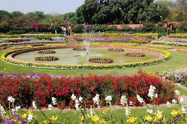image - Mughal Garden