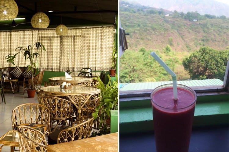 Table,Backyard,Drink,Plant,House