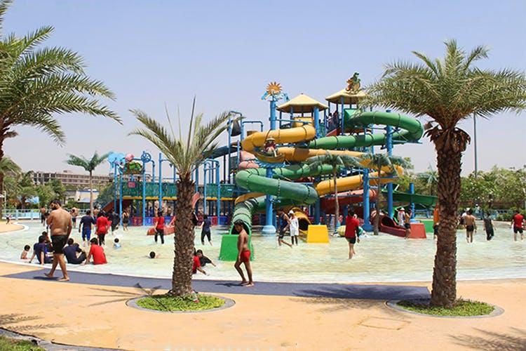 Water park,Amusement park,Tree,Park,Public space,Town,Fun,Palm tree,Recreation,Water