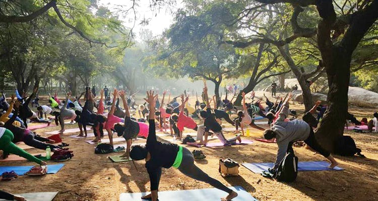 Physical fitness,Community,Yoga,Event,Leisure,Adaptation,Exercise,Sports,Crowd,Contact sport