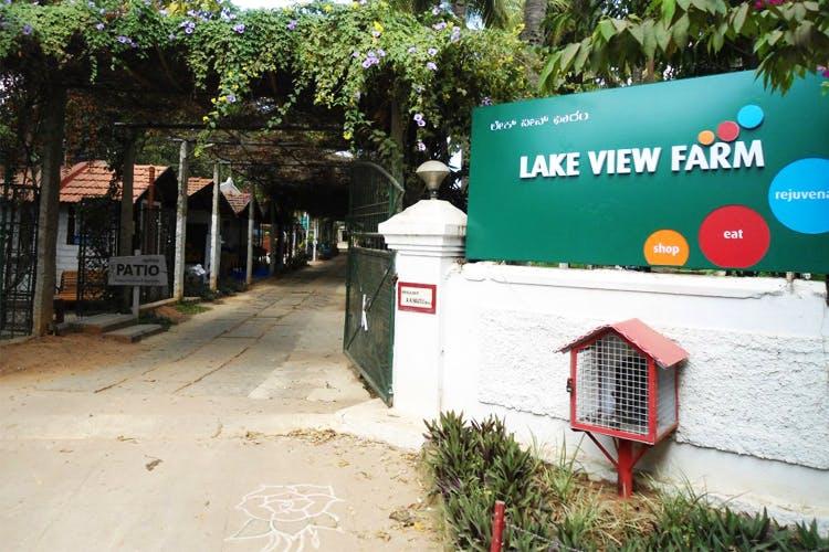 image - Lake View Farm