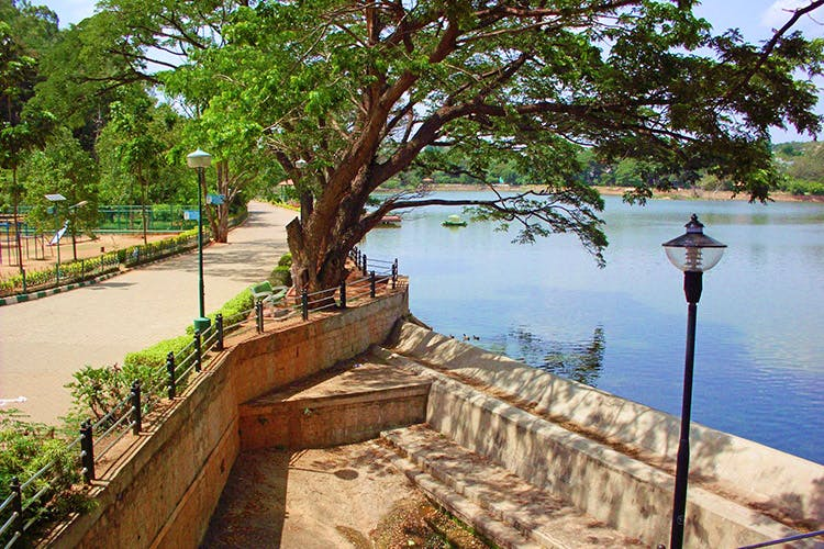 Water,Tree,Waterway,Water resources,Wall,River,Bank,Reservoir,Plant,Tourism