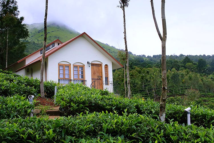 House,Property,Vegetation,Building,Cottage,Home,Plantation,Rural area,Real estate,Hill station
