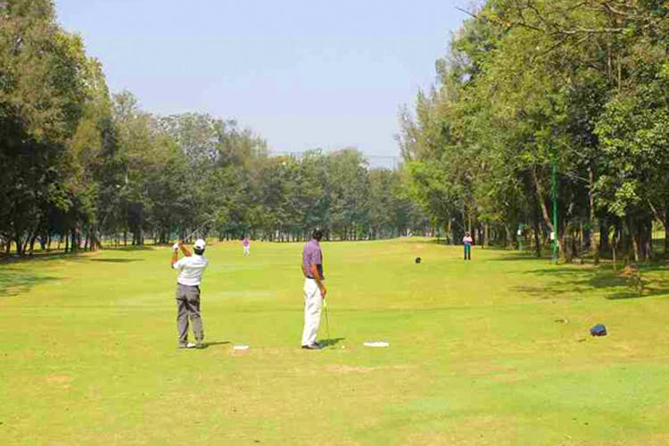 Sport venue,Golfer,Golf course,Golf club,Recreation,Golf equipment,Pitch and putt,Land lot,Professional golfer,Grassland