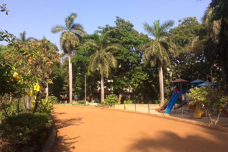 image - Patwardhan Park