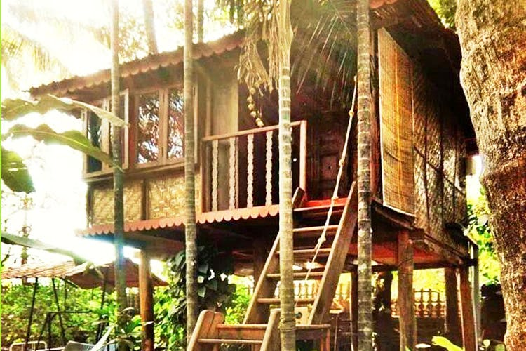 Need A Break? Chill Out At These Treehouses Near Mumbai For INR 2,200 A Night