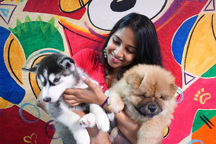 pet friendly workplaces in India 3