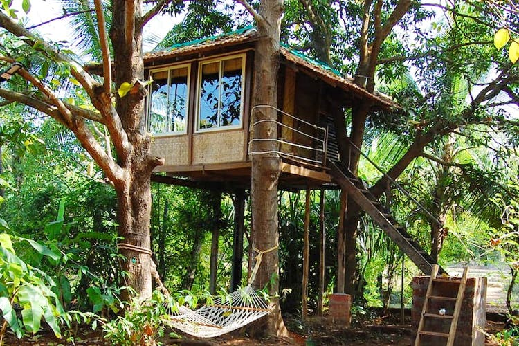 Best Tree House Resorts Near Mumbai I Lbb Mumbai