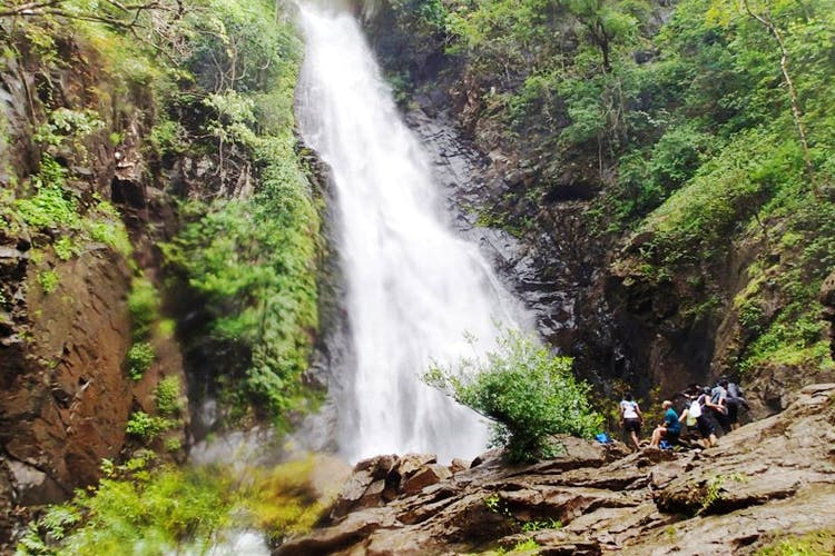 image - Secret Waterfalls, Forest Treks & More: Three Groups That Can Show You The Hidden Goa