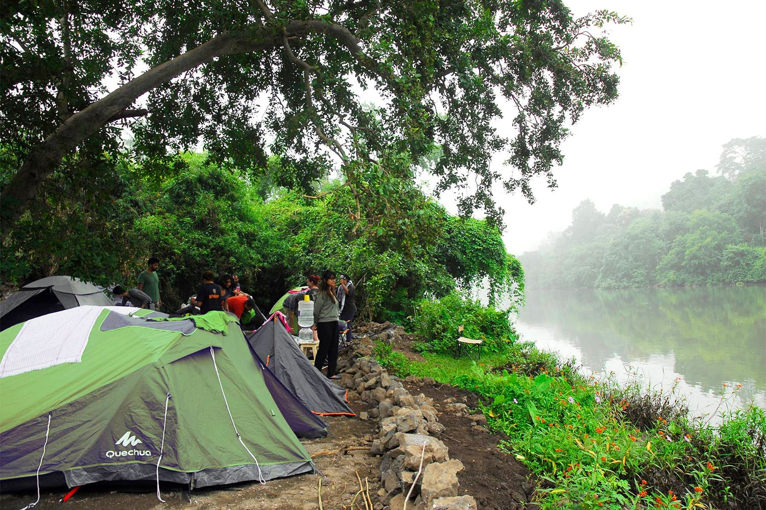 Jungle,Atmospheric phenomenon,Tree,Wilderness,Morning,Biome,Hill station,Rainforest,Tent,River